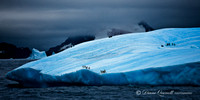 """Night Berg"", South Orkneys, Antarctica"